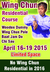 icon Wing Chun Residential Course