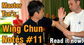 link Wing Chun Notes 11