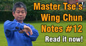 Link to Wing Chun Note 12