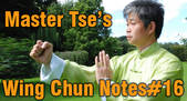 Wing Chun NOtes 16