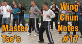 link to Wing Chun Note 17