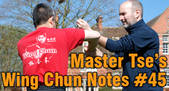 graphic link Wing Chun Note 46