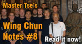 link Wing Chun Notes 8